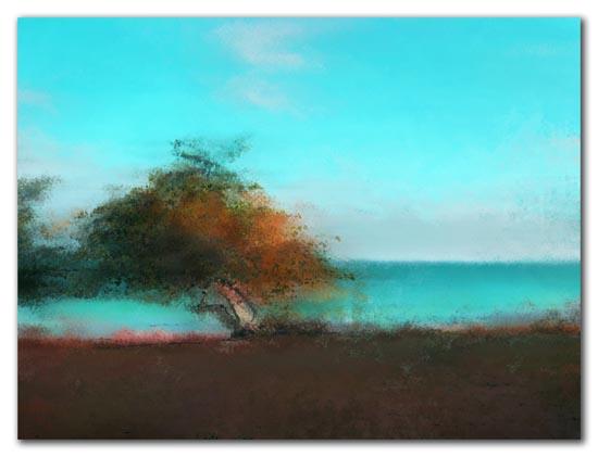 Sea Grape by the Shore - 2009