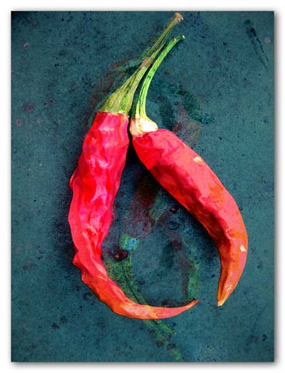 A couple of hot peppers - 2009