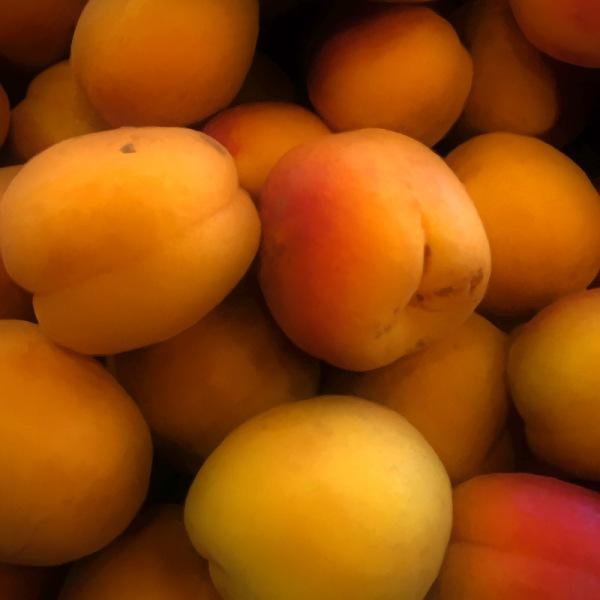 Golden Apricot Glow